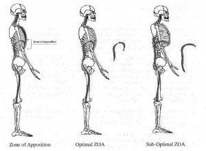 PRI postural restoration institute physical therapy